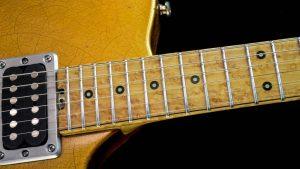 Versatile - Golden Eye - fingerboard
