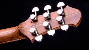 """Hellcaster - 29"""" - Living Colour - tuner"""
