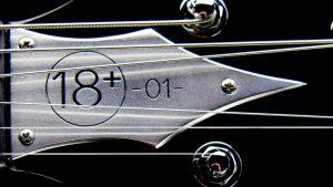 Farin Urlaub Signature Gitarre - Hals mit eingravierter Seriennummer
