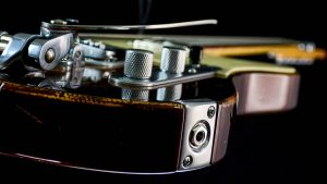 Versatile Golden Bee T-Style Custom Guitar - Klinkenbuchse