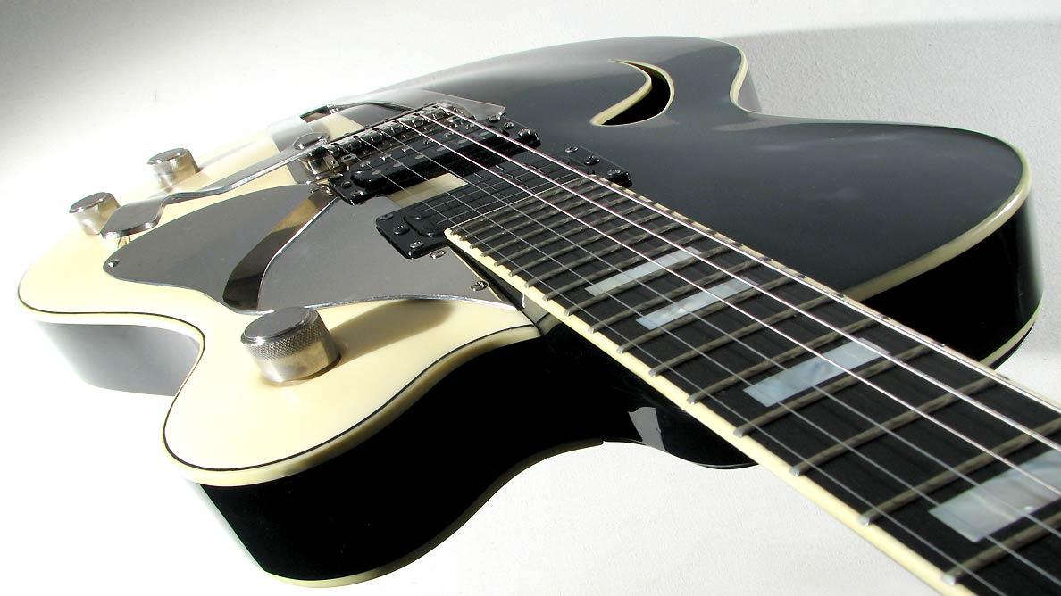 Farin Urlaub Custom Guitar Gallery - Two Tone